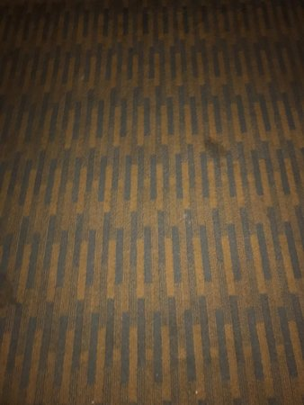 Howard Johnson by Wyndham San Diego Sea World : Dirrty carpet