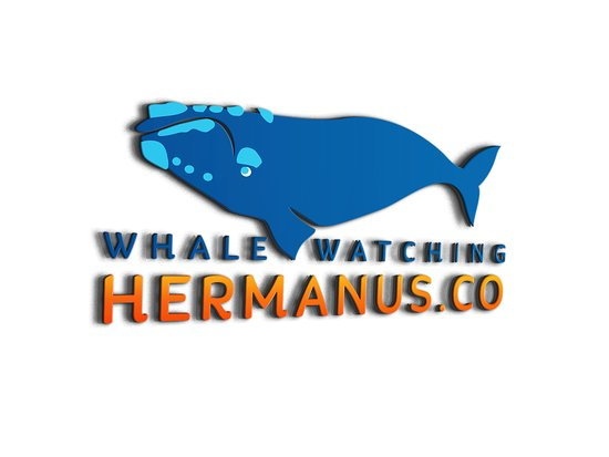 Whale_Watching_Hermanus_3D_Logo