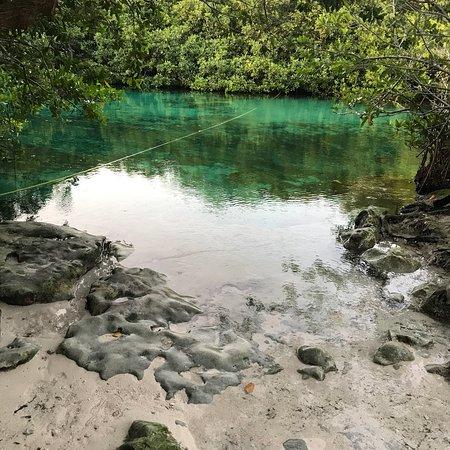 Agua Clara buceo Tulum: photo0.jpg