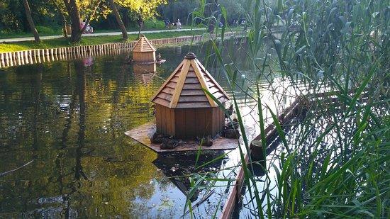 Park Garden of the Future: Домики для птиц на пруду