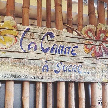 La canne à sucre