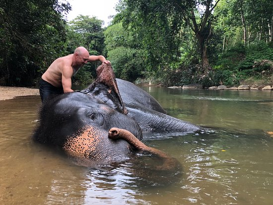 Kegalle, Sri Lanka: Elephant ear cleaning is hard work