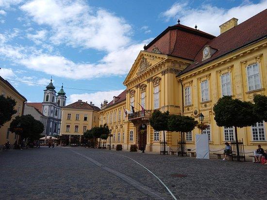 Szekesfehervar, Hungary: Varoshaz Square