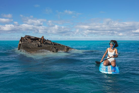 Bermuda: Paddle Boarding at the Vixen, Somerset