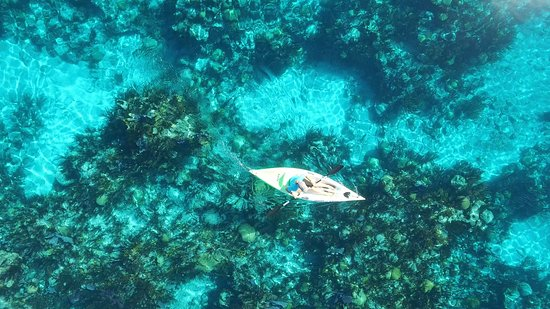 Bermuda: Kayaking over the reefs, Eastern Blue Cut