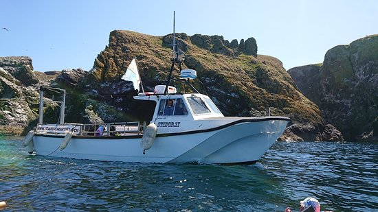 St Abbs, UK: Our boat Stingray