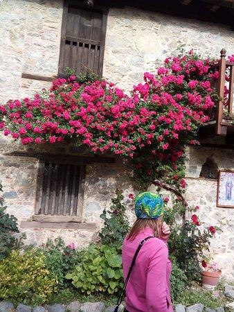 Kalopanagiotis, Cyprus: Двор монастыря