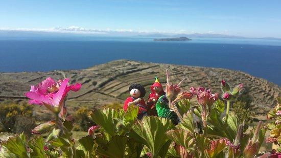 Isla del Sol, Bolivia: Vista del Titicaca desde las terrazas del lodge