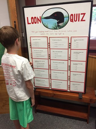Test your Loon knowledge