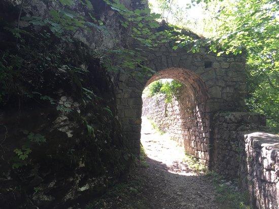Ruine Schloss Waldenburg