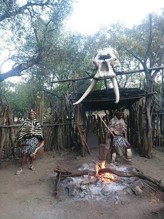 Lanseria, Sør-Afrika: DSC_3584_large.jpg