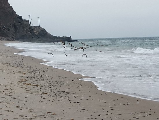 Point Mugu, Califórnia: IMG_20180718_095429_large.jpg