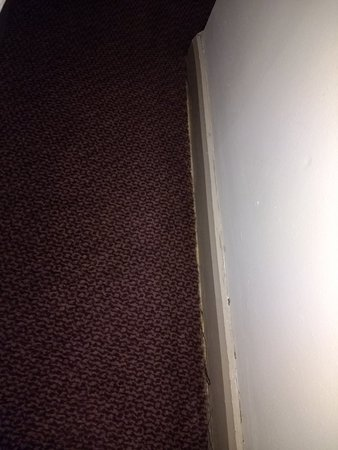 Jurys Inn Newcastle: IMG_20180719_193517837_large.jpg