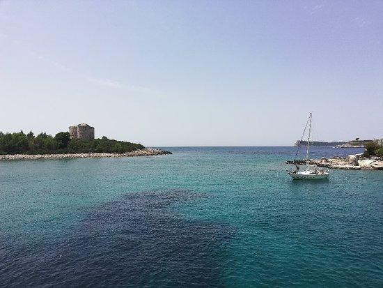 Bay of Kotor: IMG_20180703_124812_large.jpg
