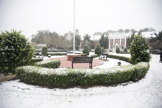 Thibodaux, Луизиана: 2018 Snowfall on campus