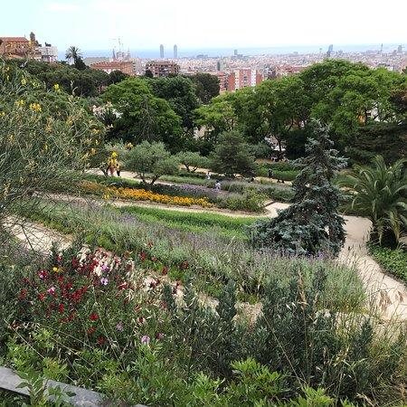 Parc Guell: photo3.jpg