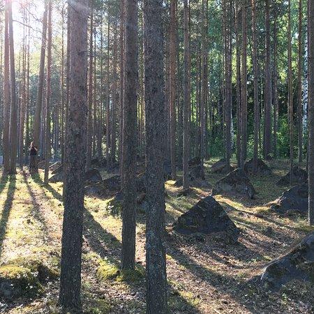 Zdjęcie Medvezhyegorsk