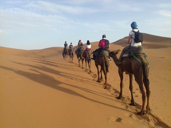 Sahara Life Private Day Tours