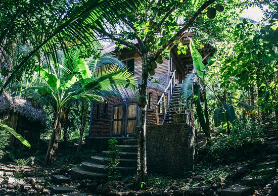 Balgue, Nicaragua: Jungle house, surrounded by edible fruits and rainforest vegetation