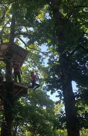Amicalola Zipline and Aerial Adventure Park