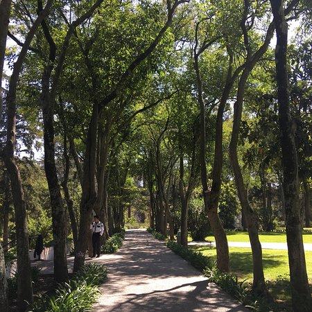 San Martin Texmelucan de Labastida, Mexico: photo3.jpg