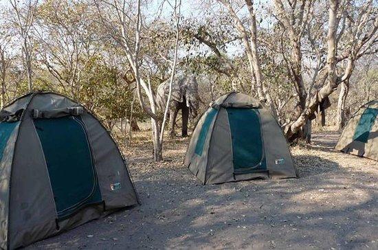 チョベ国立公園キャンピングサファリビクトリアフォールズ(2泊2日)