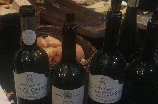 Private Walking Tour & Argentine wine Tasting: Walking Tour  & Argentine wine Tasting