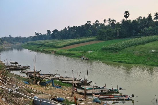 Battambang Province, Cambodia: Plantations along Sangke river banks in battambang