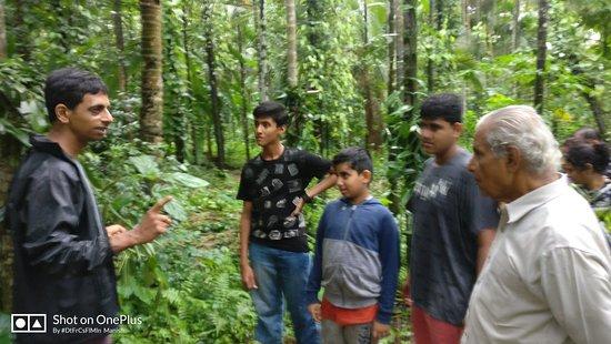 Sanguem, India: IMG_20180715_172551_large.jpg