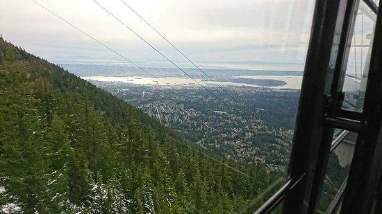 Grouse Mountain: FB_IMG_1532078468044_large.jpg