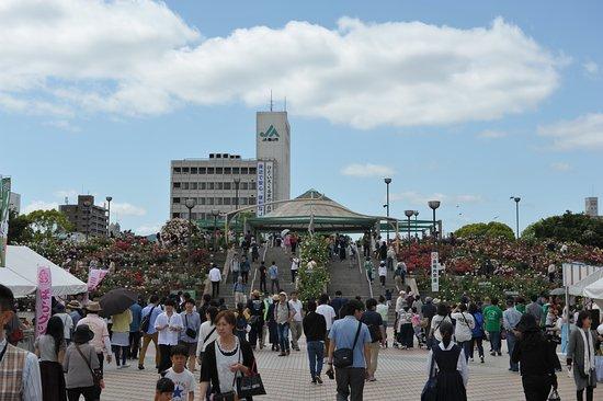 Midoricho Park