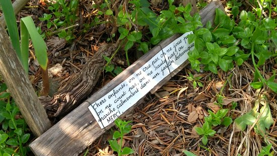 Jardin Remarquable l'Hardy - Denonain