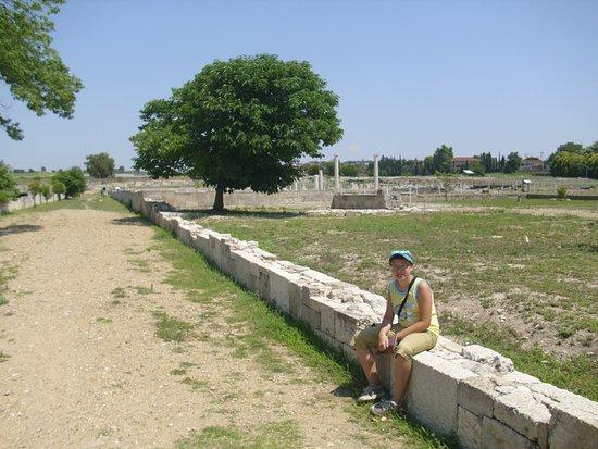 Central Macedonia, Greece: 00005455