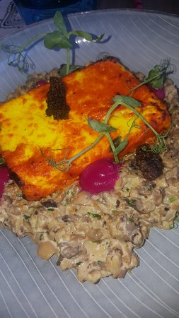 closeup of cottage cheese steak picture of bombay bungalow dubai rh tripadvisor co za