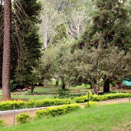 Sim`s Park: photo2.jpg