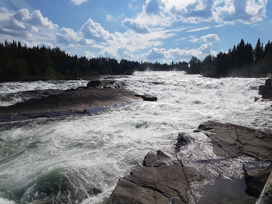 Norrbotten County, Swedia: 20180720_151215_large.jpg