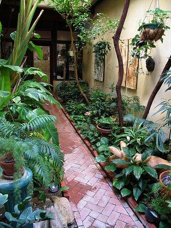 The atrium feels like a little jungle in the high desert.