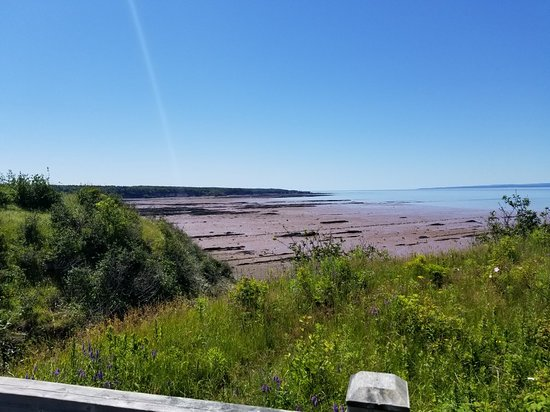 Joggins, Canada: 20180719_130620_large.jpg