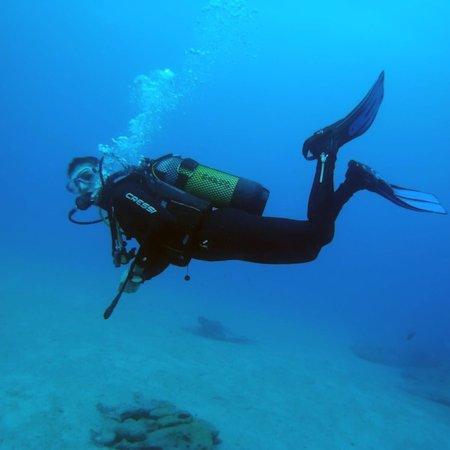 Fuerteventura Diving