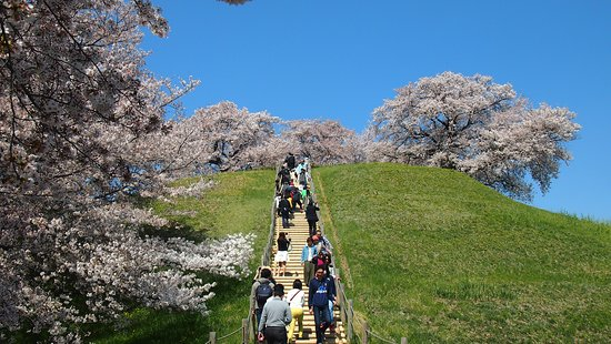 Sakitama Kofun Park