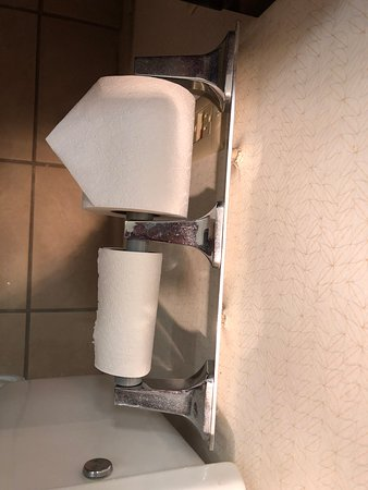 DoubleTree Suites by Hilton Hotel Columbus Downtown: Toilet paper holder almost ripped off the wall.
