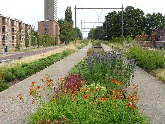 Park Oosterspoorbaan