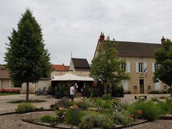 Puligny-Montrachet Photo