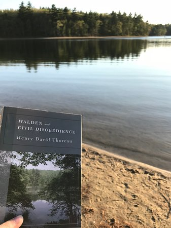 Walden Pond State Reservation: Walden Pond feat. Walden by Thoreau