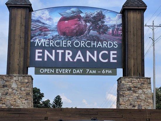 Mercier Orchards: IMG_20180719_110523_large.jpg