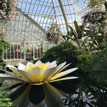 Phipps Conservatory and Botanical Gardens: photo3.jpg