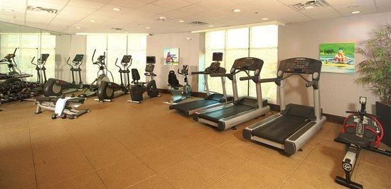Holiday Inn Austin-Town Lake: Health club