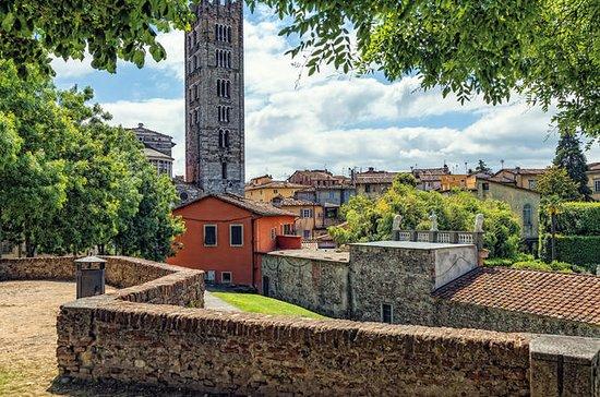 Ganztägiger Ausflug nach Lucca und...