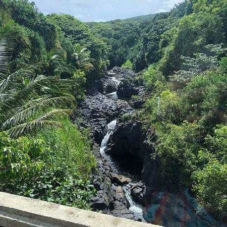 Hana Tours of Maui: photo0.jpg