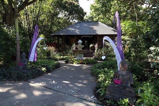 The White Lotus Tropical Day Spa